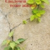 Качество мечты: о новом сборнике Виктории Токаревой