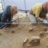 студенты КЕМГУ нашли курган с захоронениями новокаменного века