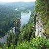 Экологи добились запрета на вырубку кедровых лесов: письмо Greenpeace